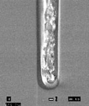 原位掺杂聚合物填充沟槽