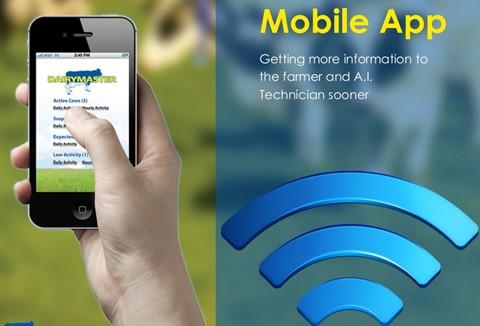 通过智能手机的应用程序了解乳牛的活动情况以及排卵时间