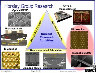 霍斯利教授团队的研究领域