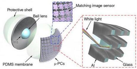 从分解的人工眼图示可看到微型光收集器结构,以及在多个μ-PC上的图像传感器建置