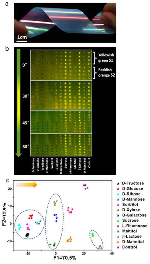 彩虹色光子晶体芯片识别多组分糖类