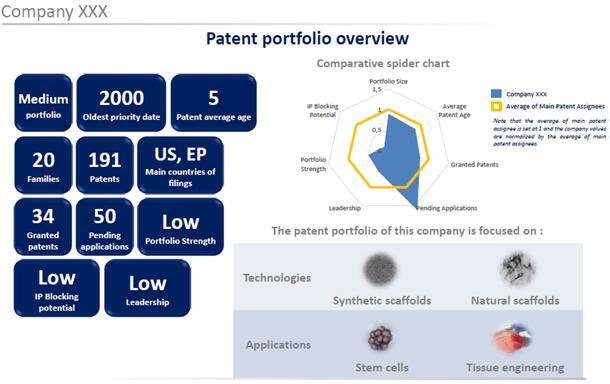 主要申请人专利分析概览