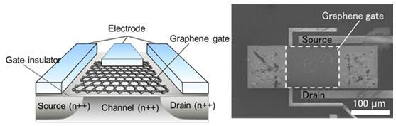 新開發的石墨烯絕緣柵傳感器示意圖(左),以及傳感器產品的掃描電鏡顯微照片(右)