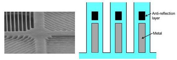 左为4种偏振元件。右为偏振元件发挥功能的线栅和抑制鬼影的防反射层
