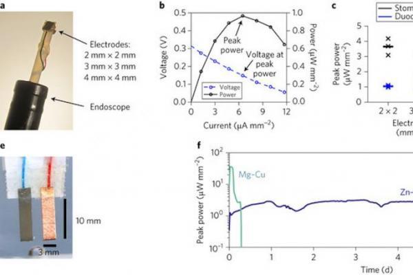 麻省理工研发出靠胃酸驱动的微型电池研制成功