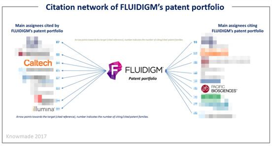 Fluidigm公司专利组合的引用网络
