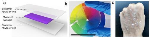 透明、可拉伸STENG的结构示意图(a)、实物照片(b)和具有触觉感知功能的STENG阵列式电子皮肤(c)