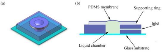 微型液体变焦透镜