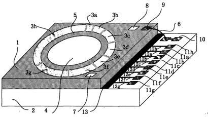 数字式微流控变焦透镜结构示意图