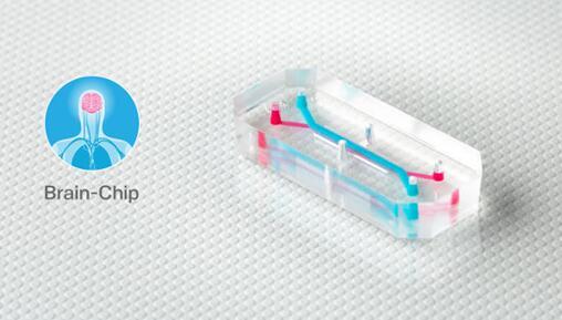 Emulate的器官芯片