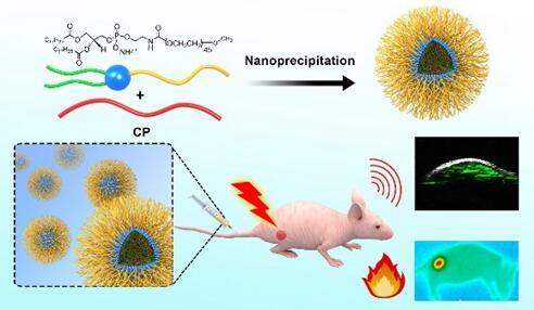 共轭聚合物纳米探针用于光声成像引导脑胶质瘤光热治疗