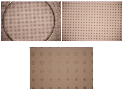上图为细胞微孔筛5、10、50倍物镜的显微镜照片。微孔直径及孔分布等具体技术参数可以根据客户需求改变和提高