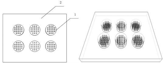 本发明细胞微阵列槽型(左)和柱形(右)结构示意图