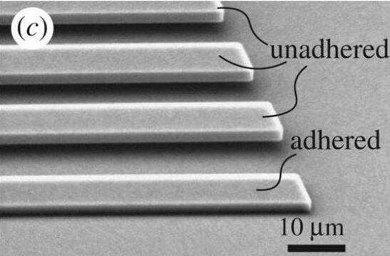 美国布朗大学开发出新的黏附力测量方法,帮助解决MEMS器件黏附难题