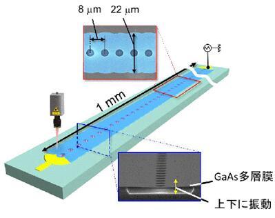 声子晶体波导和测量示意图