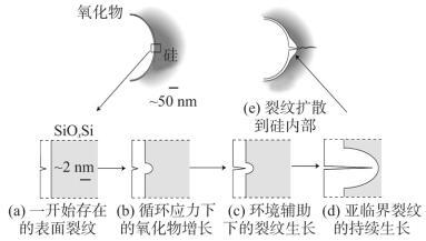 湿气辅助下的裂纹生长机理