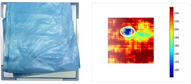 左图在苍蝇上覆盖20mm厚的塑料袋,右图为太赫兹(THz)成像系统透过塑料袋检测出苍蝇的图像