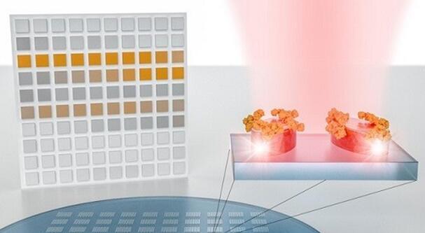 瑞士联邦理工学院研发的新型传感器系统无需红外光谱仪便能高精度地探测和分析分子,再借助人工智能(AI),为基于成像的大规模材料分析开辟了道路