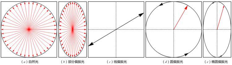 光的五种偏振态