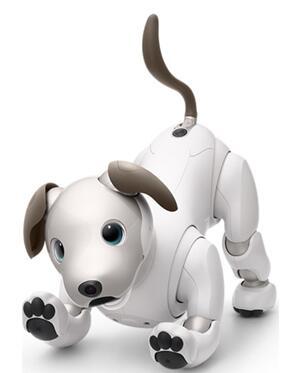 索尼最新的娱乐机器人Aibo采用了DepthSense技术和手势识别软件