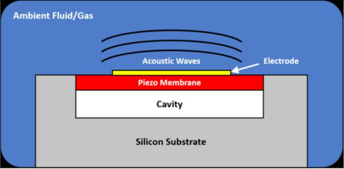 PMUT换能器的横截面示意图
