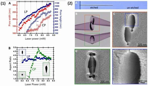 YAG中线偏振和圆偏振的激光功率与孔径和横截面纵横比相关