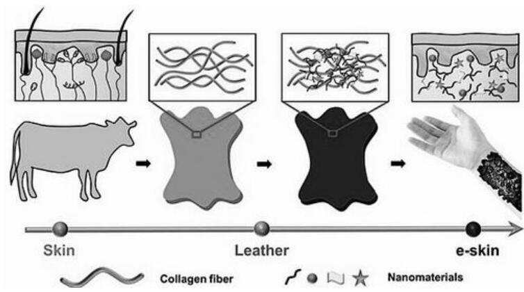 基于皮革的电子皮肤设计原理示意图