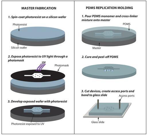 用PDMS复型模具方法制作微流控器件