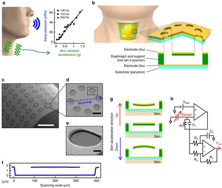 振动响应电子皮肤及其设计原理