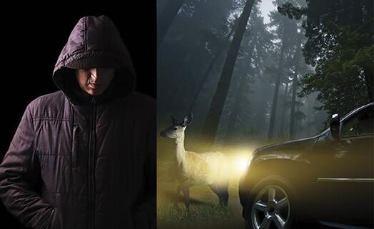 (1)一位穿着深色连帽衫的行人在夜间几乎无法被肉眼或摄像头探测到;(2)野生动物是另一种常见的道路危险