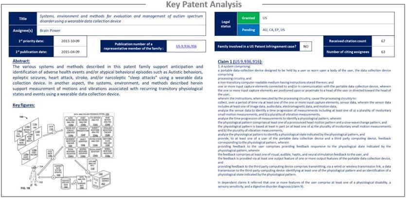 核心专利分析