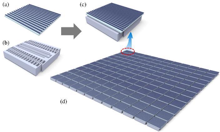 (a)MEMS光学相控阵的顶部光栅层;(b)底部横向梳状驱动结构的MEMS执行器;(c)顶部光栅层移相元件和MEMS执行器集成;(d)MEMS可编程二维光学相控阵芯片