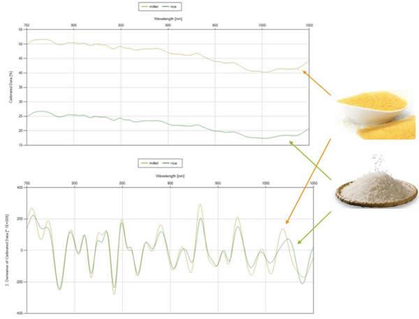 大米和小米的光谱响应曲线以及经过二阶导数处理后的曲线
