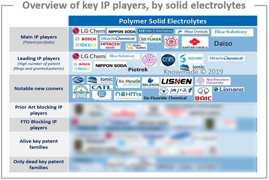 按固体电解质细分的主要专利申请人概览