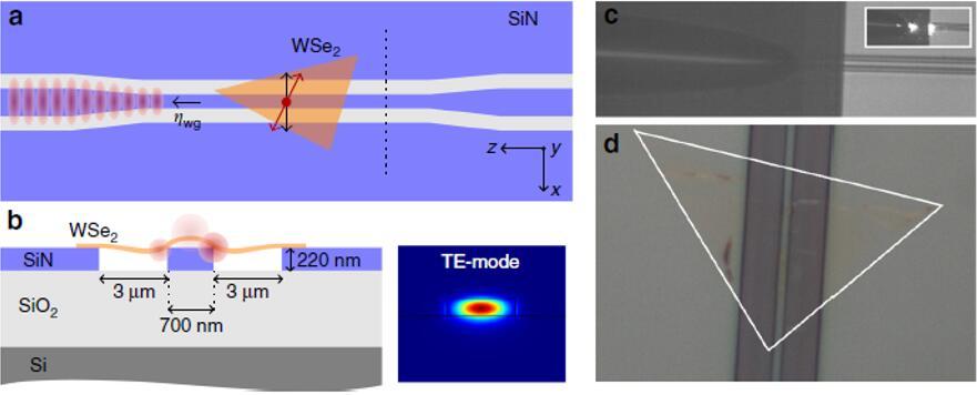 集成的WSe2量子发射器