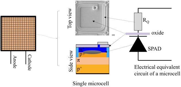 SiPM/MPPC:多个SPAD的阵列形式