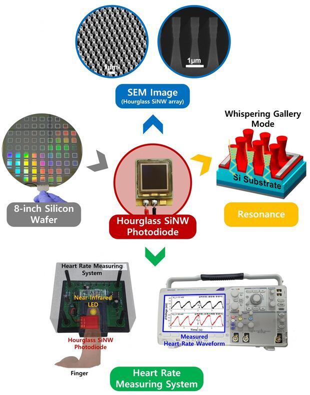 沙漏形硅纳米线光电二极管,有效提高光吸收率