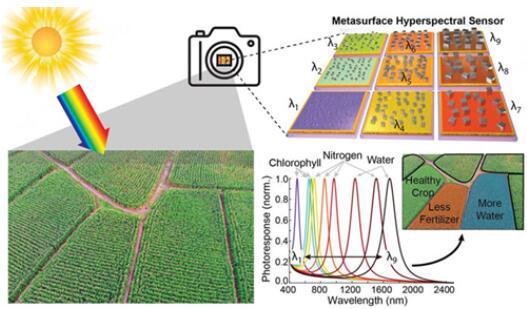 该图呈现了将不同像素调整为特定的光频,以反映作物田的各类需求