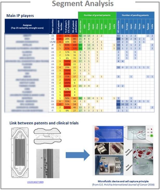 按技术细分的主要专利申请人分析