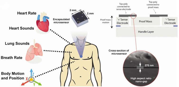 图片右侧展示的纳米级间隙让这个微型传感器可收集图片左侧展示的各类声音源和运动源发出的高分辨率信号
