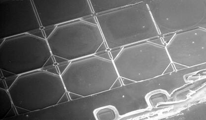 电容式MEMS超声波换能器(CMUT)细节