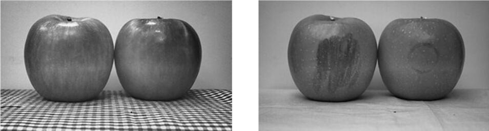 切换光源可以同时获取苹果的表面信息和果肉信息