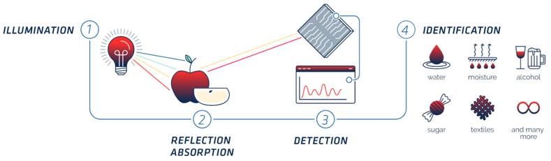 可见光及近红外光谱分析的典型过程