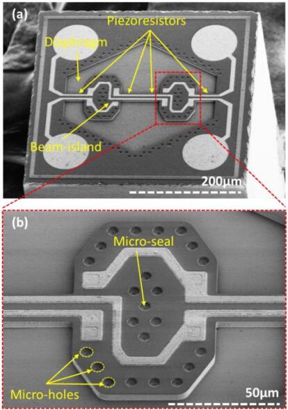 利用无疤痕微创手术工艺制造的绝对压力传感器芯片SEM图