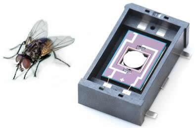 相比之下,略大些的昆虫就可以完全遮挡MEMS微镜较小的光学孔径
