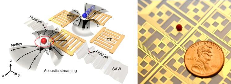 用于非接触式和可编程液滴操纵的数字声流控技术