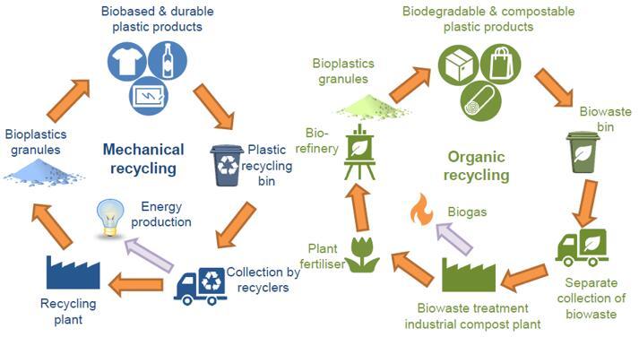 生物塑料生命周期的闭环选择