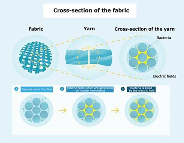 抗菌机制:细菌进入纤维后,由人体运动引发的电场会杀死细菌