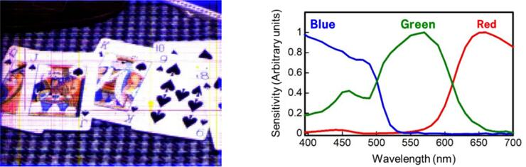 图(a):三层彩色图像传感器呈现的图像;图(b):光谱特性