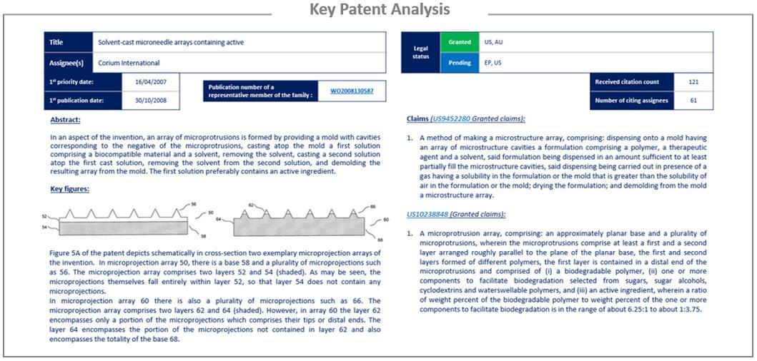 关键专利分析